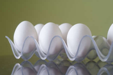 White chicken eggs in a plastic tray