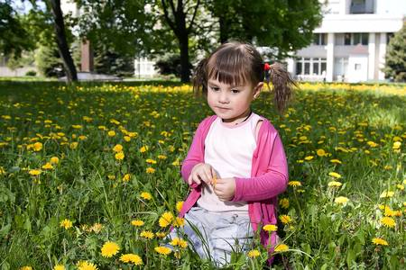 A smiling girl sitting on the dandelion field wearing a pink shirt photo