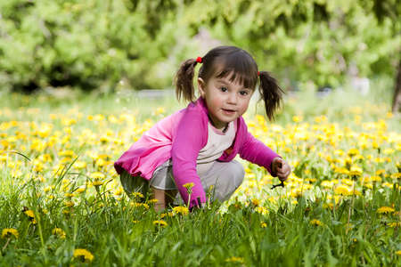 A little girl wearing a pink shirt, sitting on the dandelion field  photo