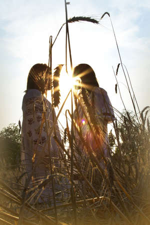 Two girls standing in a field of wheat at sunset backlit sun photo