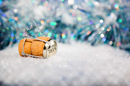 New Years EveChampagne cork  in the snow new years 2019