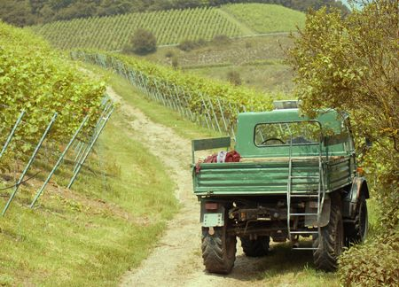 Vineyard view with truck in Blankenshornberg, Germany Stock Photo - 4855657