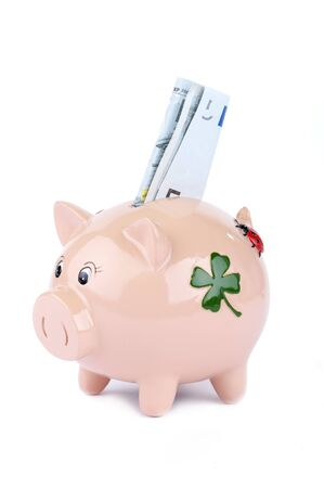 Pink Piggy Bank With Money Isolated On White photo
