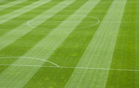 turf: Detail of Soccer Field Grass in a Stadium