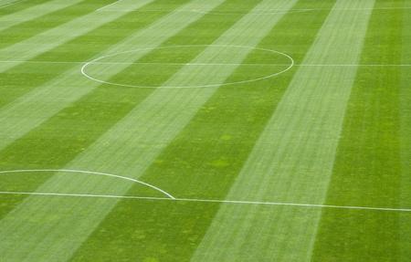football net: Detail of Soccer Field Grass in a Stadium