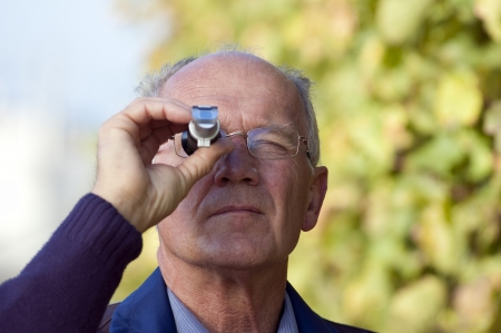 ripeness: Experienced Vintner Measures The Sugar Content of Grapes With A Refractometer Stock Photo