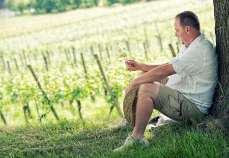 winemaker holding a glass to taste wine in the vineyard  photo
