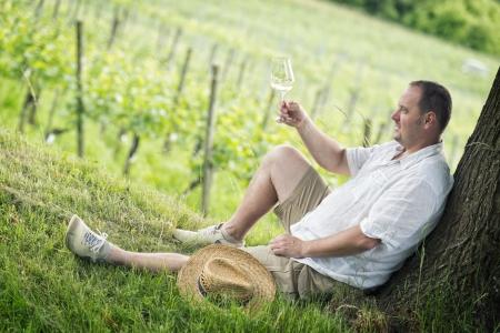 winemaker: winemaker tasting a glass white wine in the vineyard Stock Photo
