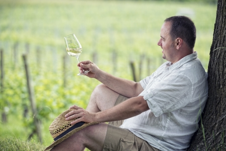 viniculture: winemaker tasting a glass white wine in the vineyard Stock Photo