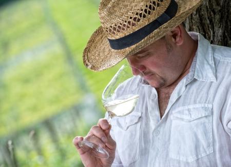 olfato: enólogo degustación de una copa de vino blanco en la viña Foto de archivo