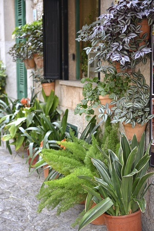 Typical Mediterranean Village with Flower Pots in Facades in Valldemossa, Mallorca, Spain ( Balearic Islands ) photo