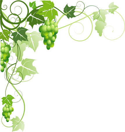 Ornament with grapes