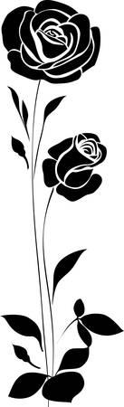 rosas negras: Rosas