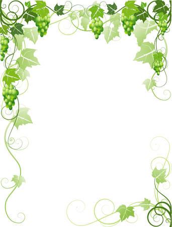 bordure vigne: Image avec les raisins Illustration