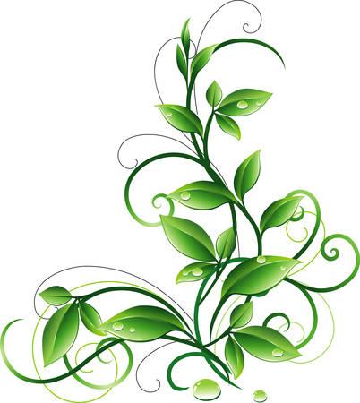 Ornament with leaves Ilustração
