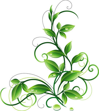 Ornamento con foglie