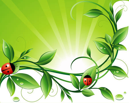 an insect: Green background Illustration