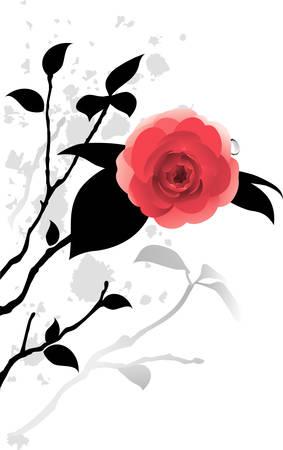 Camellia Stock Vector - 7749760