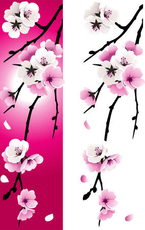 vertical garden: Apricot Illustration