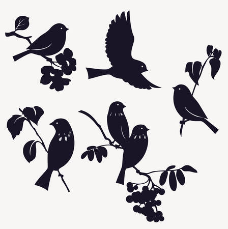 flock of birds: Set of birds Illustration