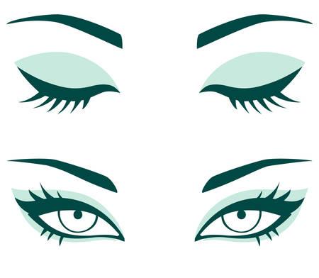 brow: set of female eyes Illustration
