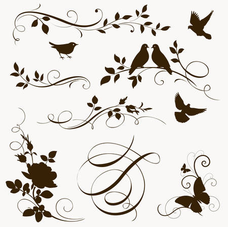 butterfly tree: Decorative floral calligraphic elements. Set of spring silhouettes