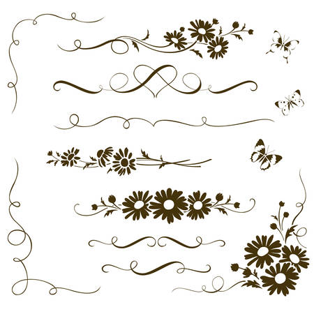 matricaria recutita: Decorative calligraphic elements with wild chamomile flowers. Floral ornaments and butterfly silhouettes for page decor