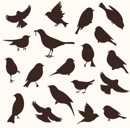 Vector set of bird silhouette. Sitting and flying birds