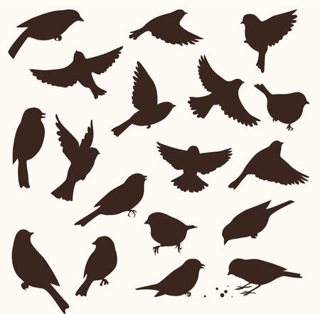 Set of decorative birds silhouettes. Vector illustration 向量圖像
