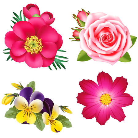 Vector decorative flowers with buds and leaves 向量圖像