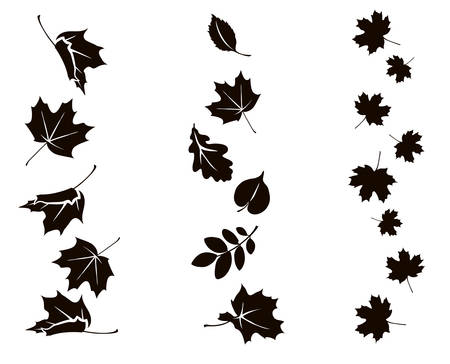 Autumn falling leaves. Vector silhouette of maple, oak, rowan and other leaves. Set of autumn decorations. 向量圖像
