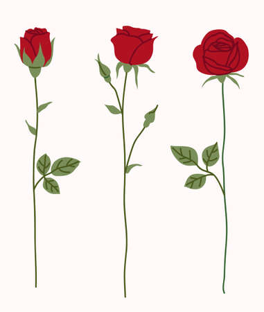 Set of decorative red rose silhouette with green leaves. Vector illustration. Flower icon 版權商用圖片 - 163492541