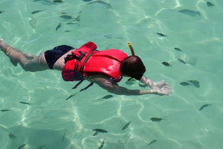 snorkelers: Snorkelers