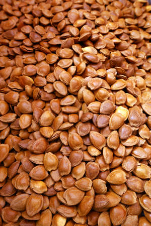 apricot kernel: Almond