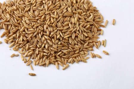 oat Imagens