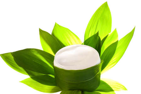 Container of face cream in green leaves