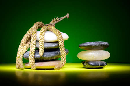 Still life with stacks of pebbles and hazel catkin Stock Photo