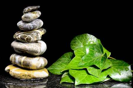 Still life with stacks of pebbles and ivy leaves