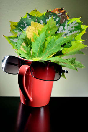 Autumn leaves in red cup with sunglasses