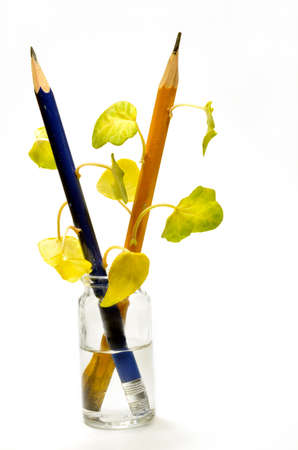 Pencils in vial with water and  leaves on them