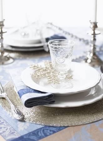 Christmas table set for holiday dinner party   shallow DOF Stock Photo - 16455780