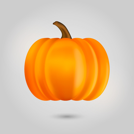 photorealism: Pumpkin isolated on white background. Vector illustration.