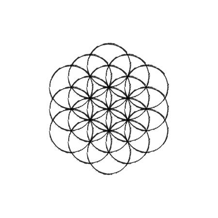 Flower of life vector