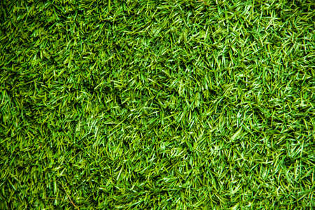 artificial turf Stock Photo - 21002823