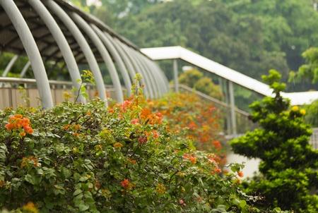 overpass: Singapore overpass Stock Photo