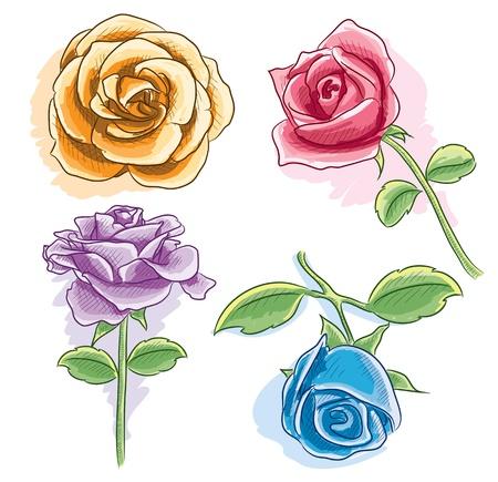 Aquarel Rose