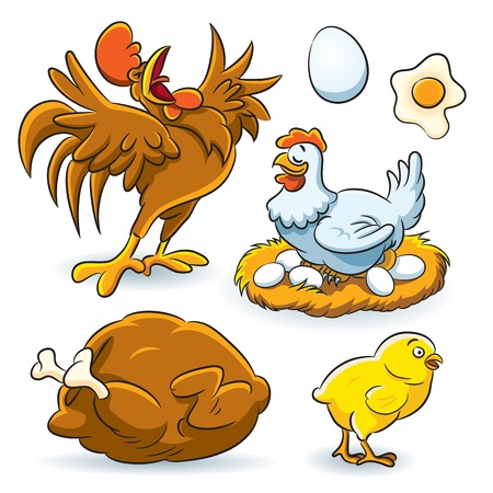 Chicken Collection Stock Vector - 12480667