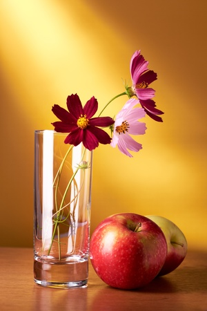 Still life with flowers and apples on yellow background Reklamní fotografie
