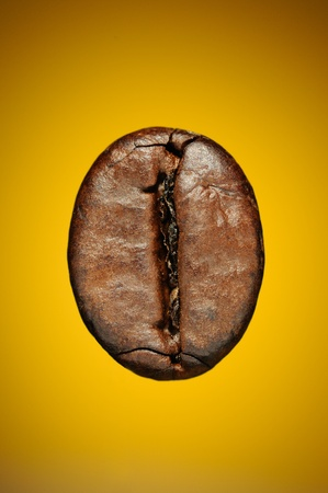 Single coffee bean on yellow background  Macro shot 版權商用圖片