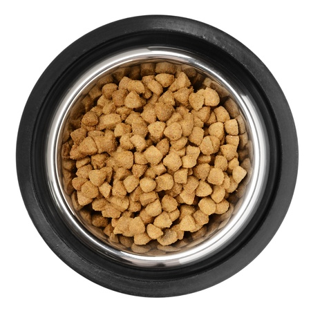 Cats and dogs dry food  in the stainless steel bowl